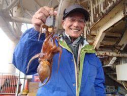 須磨海釣り公園 タコテンヤでマダコ300g