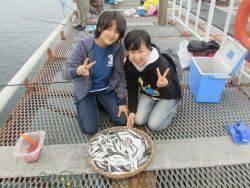 サビキ絶好調です♪ 尼崎市立魚つり公園