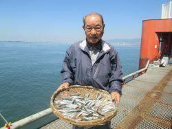 カタクチイワシを100匹!尼崎市立魚つり公園