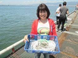 尼崎市立魚つり公園 カタクチイワシ4500匹!