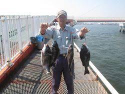 尼崎市立魚つり公園 チヌ狙いが面白くなってきました。