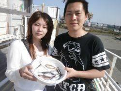 大阪南港海釣り公園 イワシ、サバ、ほか