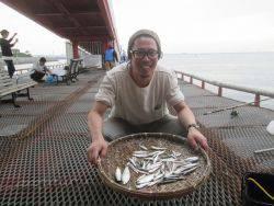 尼崎市立魚つり公園 カタクチイワシ700匹
