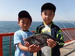 平磯海釣り公園 ウキ釣りでウマヅラハギ34cm