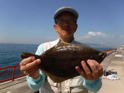 神戸市立平磯海づり公園 投げ釣りでカレイ