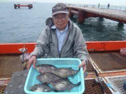ウマヅラ大漁! 神戸市立須磨海づり公園