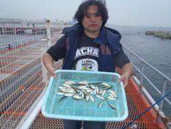 神戸市立須磨海づり公園 サビキで豆アジ釣れています