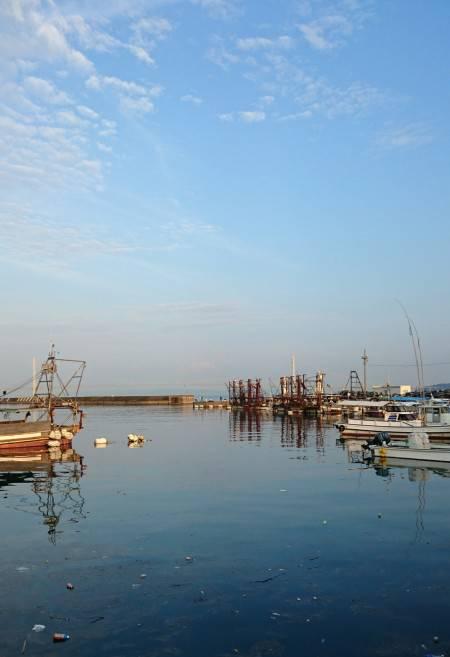 漁港内でオクトパッシング