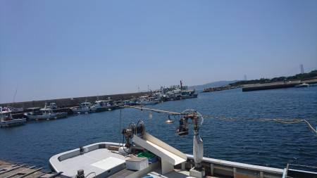 塩屋漁港でサビキ釣り