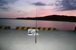 夜釣りから西淡釣査