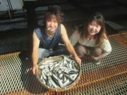 尼崎市立魚つり公園 アジ合計1200匹