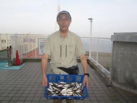 尼崎市立魚つり公園 午前中はアジが入れ喰い!