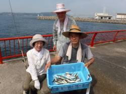 神戸市立平磯海づり公園 サビキ釣果