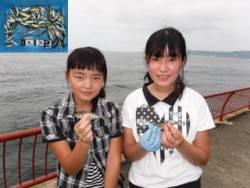 神戸市立平磯海づり公園 サビキでアジ