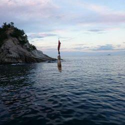 今年初のエギング釣行