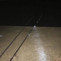 楠漁港  雨中釣行