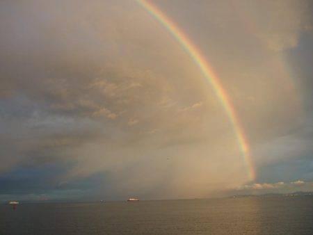 虹に癒されました