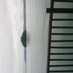 明石川河口で8目釣り