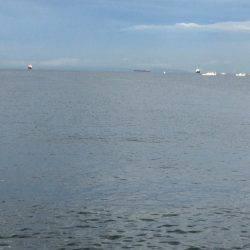 北港周辺で朝練