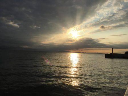 淡路島 アオリイカ釣行