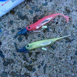 樽井☆太刀魚