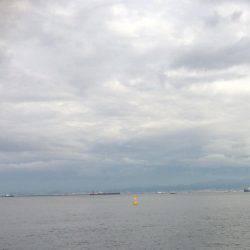 南港周辺で朝練
