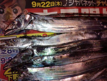 太刀魚うおー!