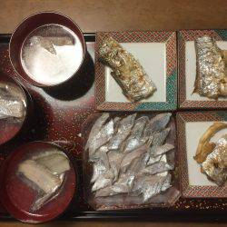 貝塚太刀魚