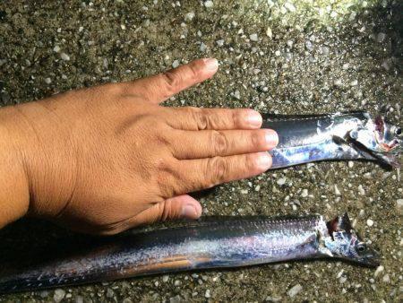 太刀魚ゲッター