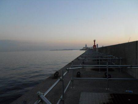 早朝~ウキ釣りでタチウオ調査