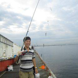 尼崎市立魚つり公園 釣果