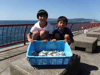 神戸市立平磯海づり公園 アジ105匹