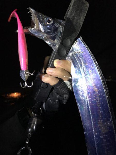 太刀魚パトロール!