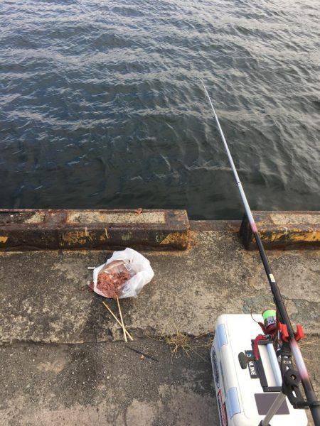 強風の中タチウオ釣りに
