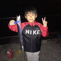 太刀魚が釣れた‼️