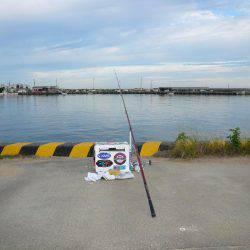 富島港釣行
