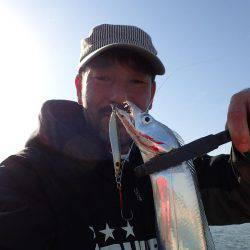 デイ太刀魚!