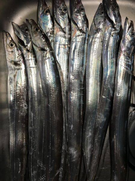 太刀魚ワインド