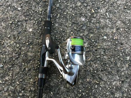 タチウオ釣れました
