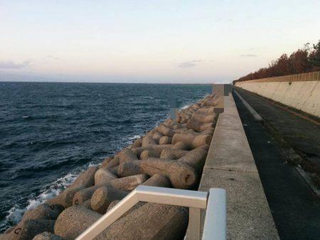貝塚タチウオ爆風の巻…