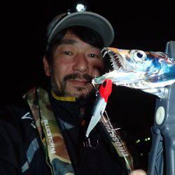 安定の太刀魚♪