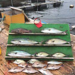 みうら海王 釣果