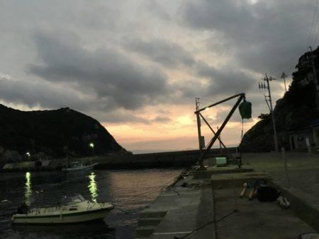 鵜来島家本渡船 釣果