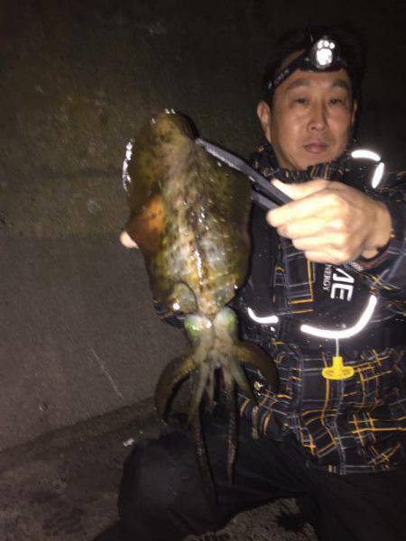 アオリウキ釣り