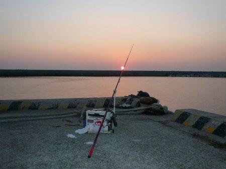久しぶりに浦港へ釣行しました