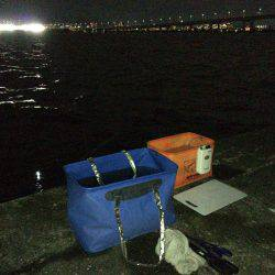 鳴尾浜で半夜釣り