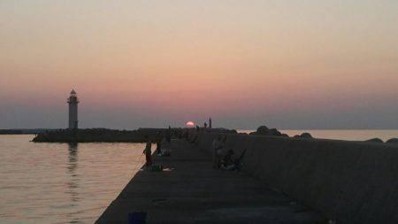 11月突入、気温は下がるが海水温はまだ高め、釣り日和ですね
