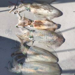 BlueOcean(ブルーオーシャン) 釣果