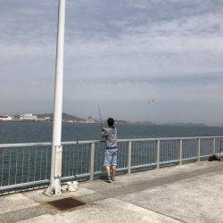 富田新港釣り