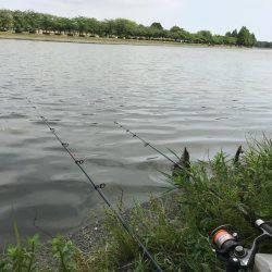 水元公園で、小物釣りしました!